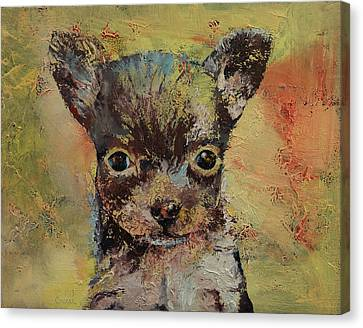 Chihuahua Canvas Print by Michael Creese