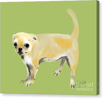 Chihuahua Harry Canvas Print by Go Van Kampen