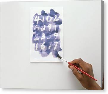 Child Using Paintbrush And Blue Ink Canvas Print by Dorling Kindersley/uig