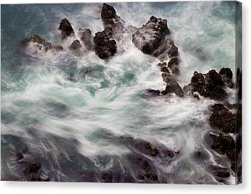 Chimerical Ocean Canvas Print by Heidi Smith