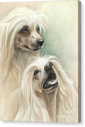 Chinese Crested Canvas Print by Tobiasz Stefaniak