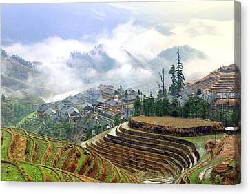 Chinese Famland In Longshend Canvas Print by King Wu