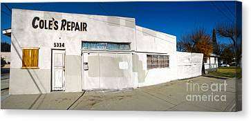 Chino - Coles Repair - 02 Canvas Print by Gregory Dyer