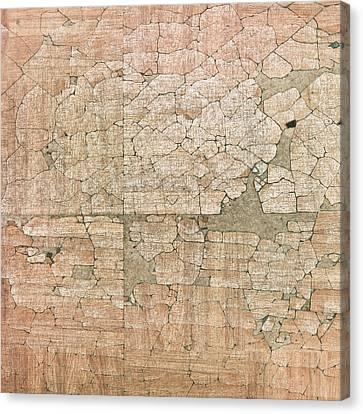 Chipped Veneer Canvas Print by Tom Gowanlock