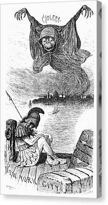 Cholera Cartoon, 1883 Canvas Print by Granger