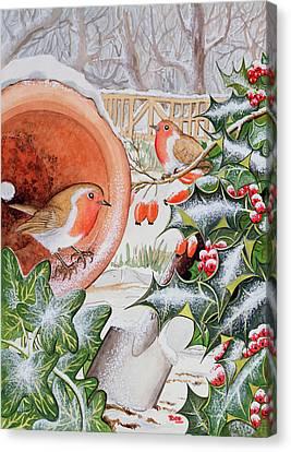 Christmas Robins Canvas Print by Tony Todd