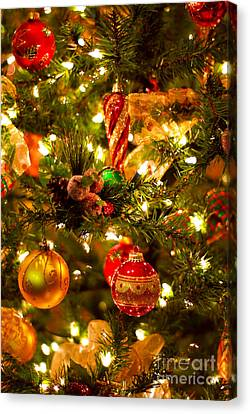 Christmas Tree Background Canvas Print by Elena Elisseeva