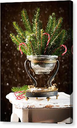 Christmas Tree Decoration Canvas Print by Amanda And Christopher Elwell