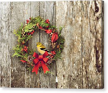 Christmas Wreath. Canvas Print by Kelly Nelson