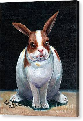 Chubby Bunnie Canvas Print by Linda L Martin