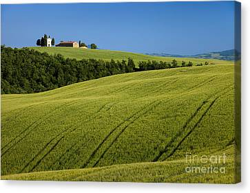 Church In The Field Canvas Print by Brian Jannsen