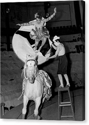 Circus Horse Stunt Canvas Print by Retro Images Archive
