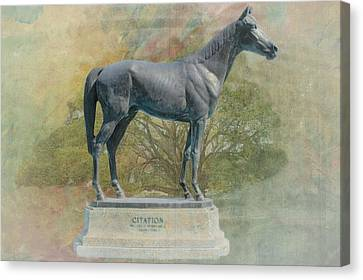 Citation Thoroughbred Canvas Print by Rudy Umans