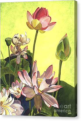 Citron Lotus 1 Canvas Print by Debbie DeWitt