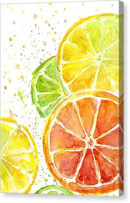 Citrus Fruit Watercolor Canvas Print by Olga Shvartsur