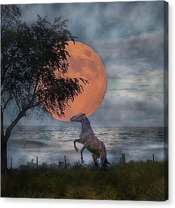 Claiming The Moon Canvas Print by Betsy Knapp