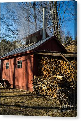 Classic Vermont Maple Sugar Shack Canvas Print by Edward Fielding