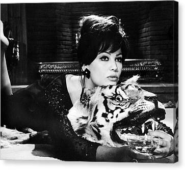 Claudia Cardinale In The Pink Panther  Canvas Print by Silver Screen