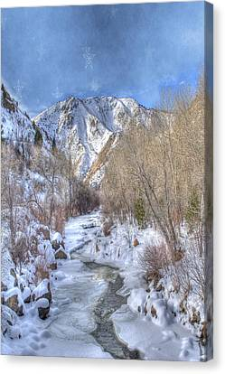 Clear Creek In The Winter Canvas Print by Juli Scalzi