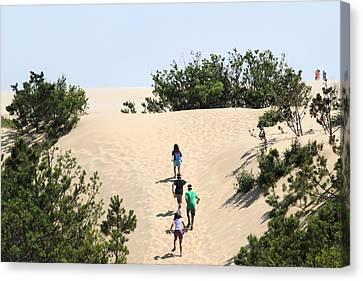 Climbing The Dunes Canvas Print by Carolyn Ricks