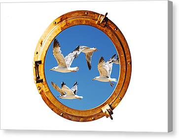 Close-up Of A Boat Closed Porthole With Flying Seagull On The White Background Canvas Print by Joel Vieira