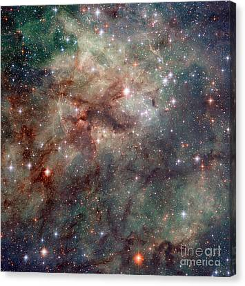 Close-up Of The Tarantula Nebula Canvas Print by Science Source