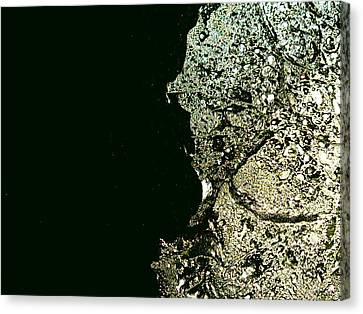 Closer To Planet X Canvas Print by Robert Cunningham