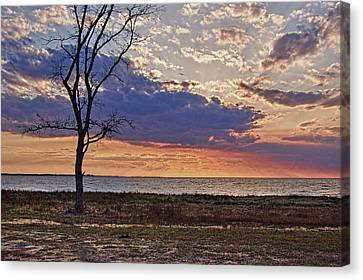 Clouding Up On Oyster Bay Canvas Print by Michael Thomas