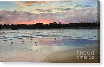 Coastal Beauty Canvas Print by Betty LaRue