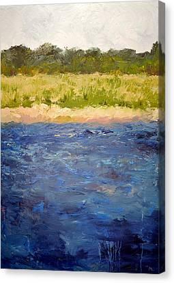 Coastal Dunes Canvas Print by Michelle Calkins