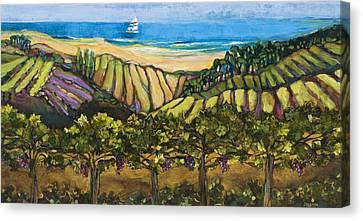 California Coastal Vineyards And Sail Boat Canvas Print by Jen Norton