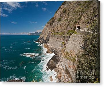 Coastal Stroll Canvas Print by Mike Reid