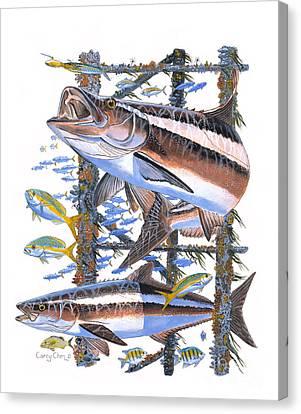Cobia Hangout Canvas Print by Carey Chen