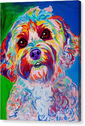 Cockapoo - Carmie Canvas Print by Alicia VanNoy Call