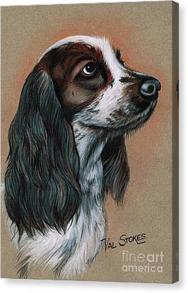 Cocker Spaniel Canvas Print by Val Stokes
