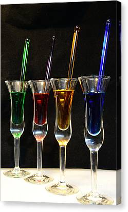 Cocktails Anyone Canvas Print by Paul Ward
