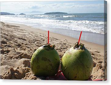 Coconuts Juice On The Beach Canvas Print by Chikako Hashimoto Lichnowsky