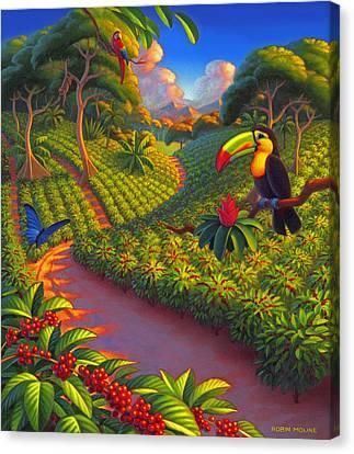 Coffee Plantation Canvas Print by Robin Moline