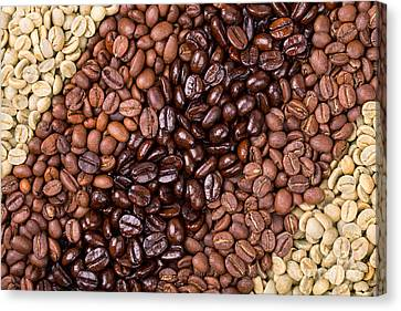 Coffee Selection Canvas Print by Jane Rix