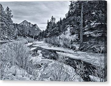 Cold Colorado Creek Canvas Print by Darren  White