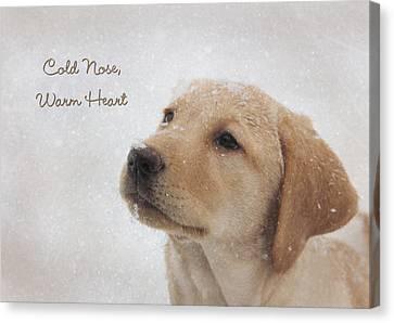 Cold Nose Warm Heart Canvas Print by Lori Deiter