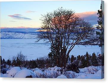 Cold Trees And Ice Canvas Print by Harold Greer