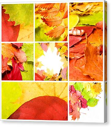 Collage Colorful Canvas Print by Boon Mee