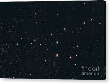 Collinder 399 The Coat Hanger Cluster Canvas Print by John Chumack