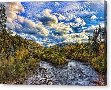 Coloma 4 Canvas Print by Mike Durant