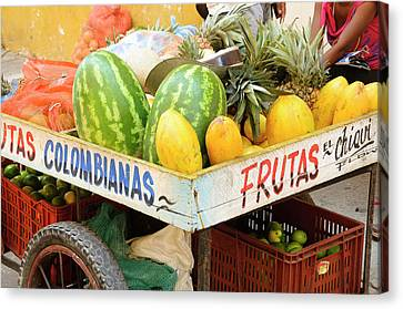 Colombia, Cartagena Canvas Print by Matt Freedman