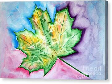 Color Leaf Canvas Print by Dani Abbott