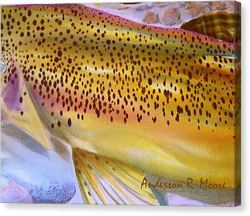 Color Me Trout- Brown Canvas Print by Anderson R Moore