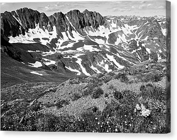 Colorado Black And White Canvas Print by Aaron Spong