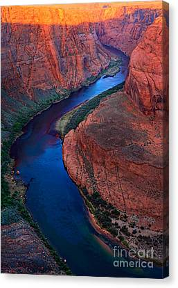 Colorado River Bend Canvas Print by Inge Johnsson